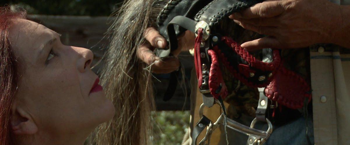horsebeing2_crop